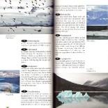 svalbard-guide-2